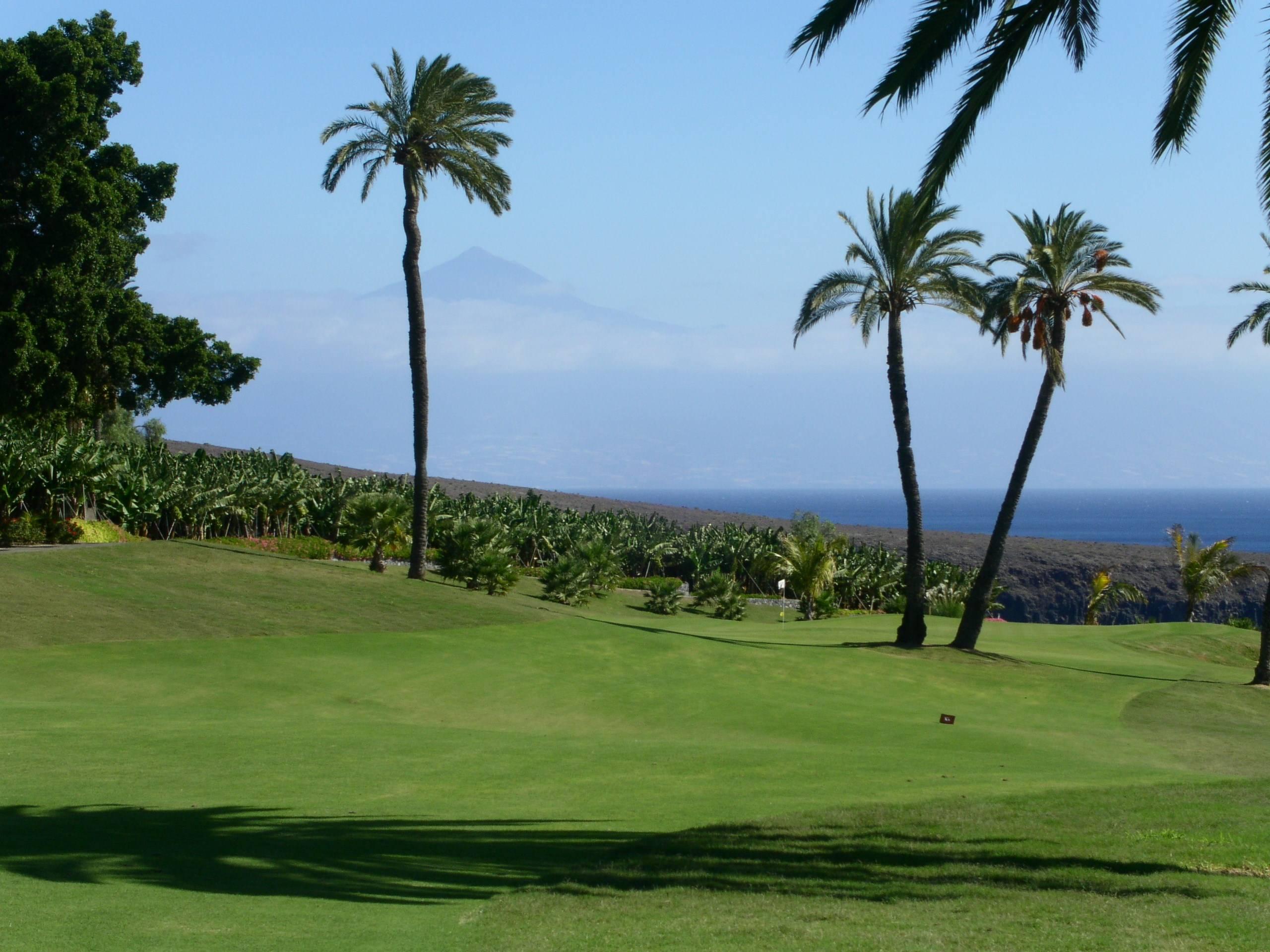 Tecina Golf 10